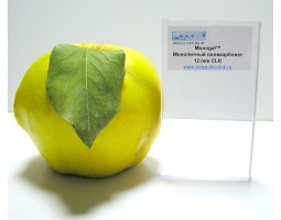 2 мм прозрачный, POLYGAL, Монолитный поликарбонат