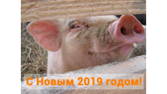 С Новым 2019 годом! График работы компании Анкор Крым